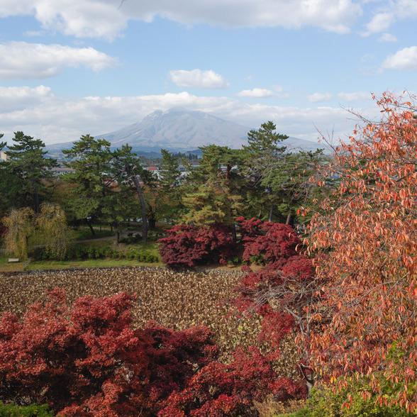 20151101午前の弘前公園CFV50-36.jpg