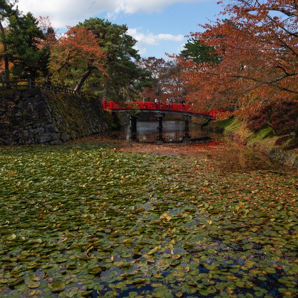 20151101午前の弘前公園CFV50-39.jpg