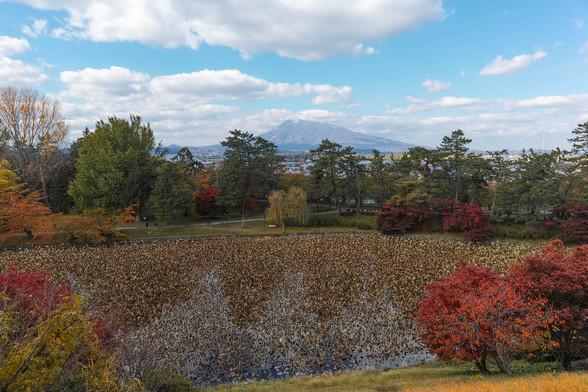 20151101午前の弘前公園dp0-42.jpg