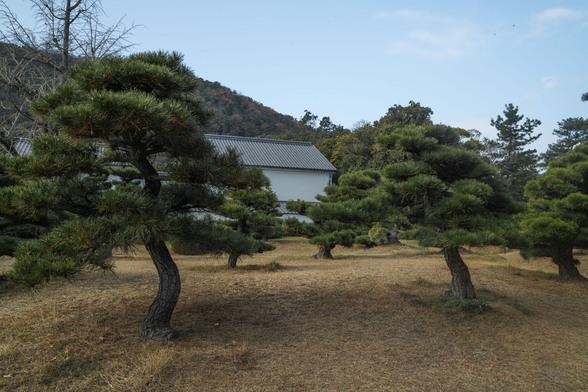 20151226午前の香川・栗林公園SD1-13.jpg