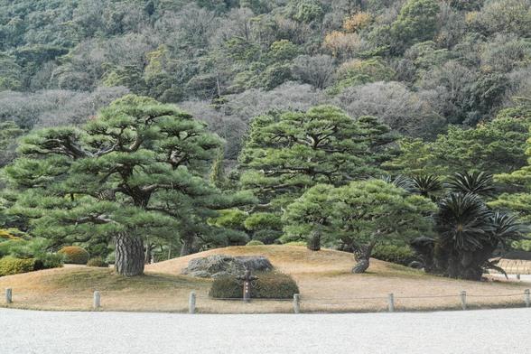 20151226午前の香川・栗林公園SD1-18.jpg
