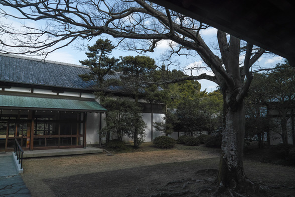 20151226午前の香川・栗林公園SD1-21.jpg