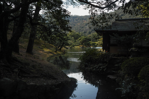 20151226午前の香川・栗林公園SD1-27.jpg