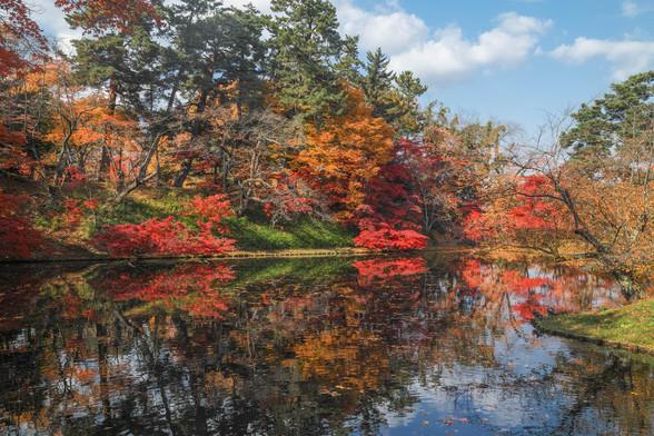 20171103午前の弘前・弘前公園SD1-196.jpg
