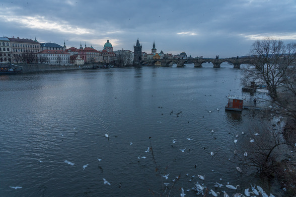 20171229朝のプラハ・マーネスーフ橋A7RIII-17.jpg